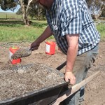 Graeme spreading sheep manure on the potato bed