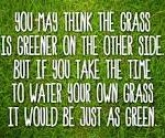 grass greener